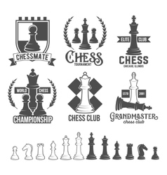 Set of chess labels badges and design elements vector