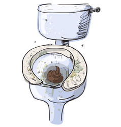 dirty toilet isolated vector image vector image