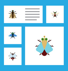 Flat icon buzz set of tiny mosquito dung and vector
