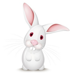 little rabbit vector image vector image