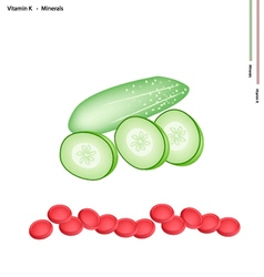Green cucumber with vitamin k and minerals vector