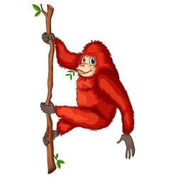 A playful red orangutan vector