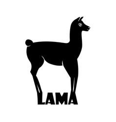 Animal logo lama lama silhouette vector