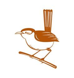 Wren bird perched on branch vector