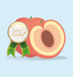 apricot natural product premium quality vector image