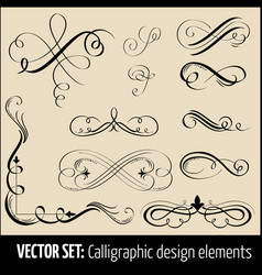Set of calligraphic and page vector