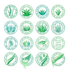 Aloe vera design elements stamps collection vector