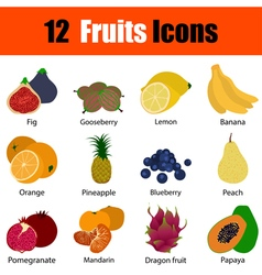 Flat design fruit icon set vector image