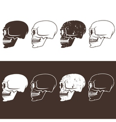 Set of aggressive skulls design template vector