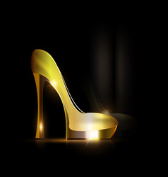 Reflection of golden shoe vector