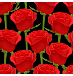seamless background with red roses on black vector image