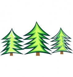 Christmas tree fir vector image