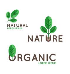 Organic logo design vector