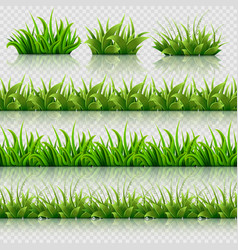 green grass seamless borders set vector image