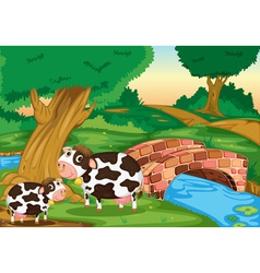 Two cows vector