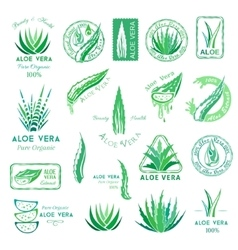Aloe vera design elements stamps and badges vector
