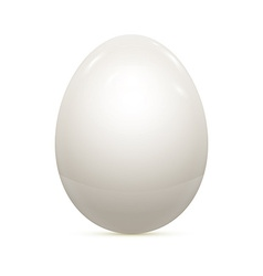 Egg isolated on white vector