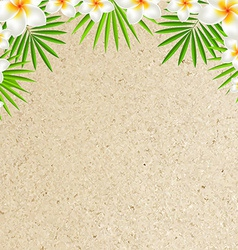 Sand background with frangipani vector