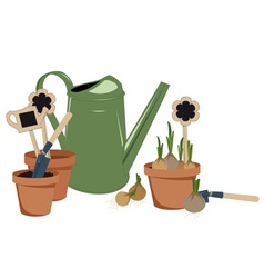 Planting bulbs in pots vector