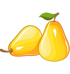 Juicy ripe pear vector
