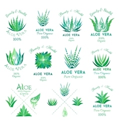 Aloe vera design elements emblems collection vector