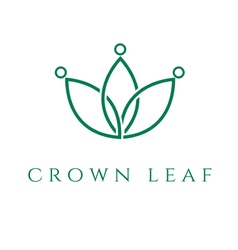 Concept icon crown in the leaf vector
