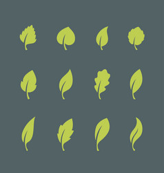 Leaf icons set isolated on dark background vector