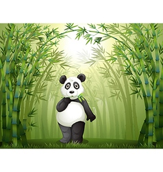 Cartoon panda bamboo forest vector