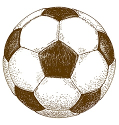 Etching football ball vector