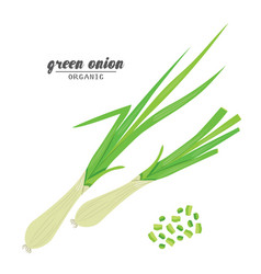 Cartoongreen onion ripe vehetables vegetarian vector