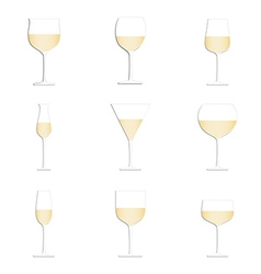 Different glasses of white wine set isolated in vector