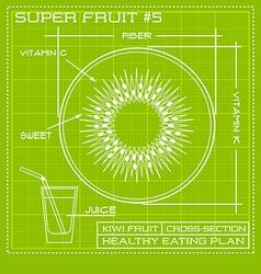 Blueprint diagram line drawing of kiwi fruit vector image vector image