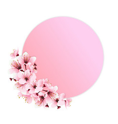 pink flower decoration vector image vector image