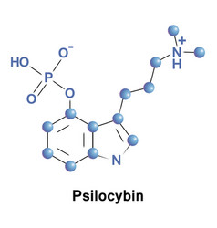 Psilocybin psychedelic compound of mushrooms vector