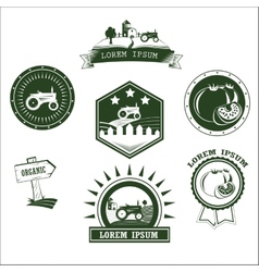 Set of retro vintage farm fresh labels badges and vector image