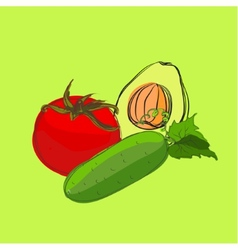 Set of sketch vegetables vector