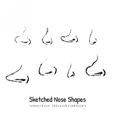 Shapes nose vector