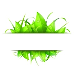 Green grass and leaves banner vector