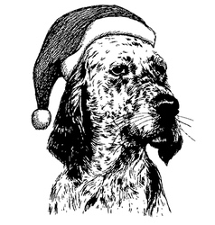 Christmas english setter dog 1 vector
