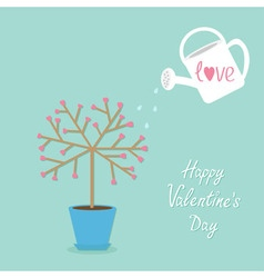 Happy Valentines Day Love tree in the pot Heart vector image