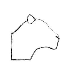 head female lion african animal beast vector image vector image
