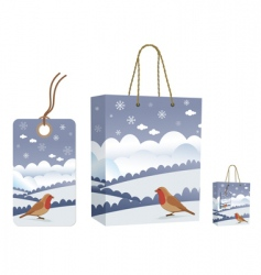 winter bag and tag set vector image