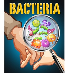 Bacteria on human hands vector