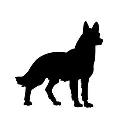 Image of an dog vector