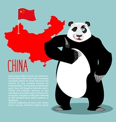 Panda and map and flag of china chinese medvde vector