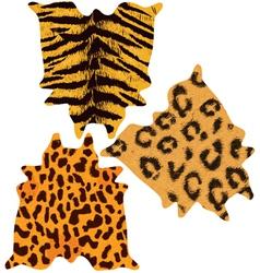 Animal wild skins vector image