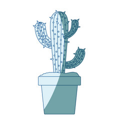 Blue shading silhouette with cactus of three vector
