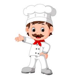 cartoon funny chef good posing vector image vector image