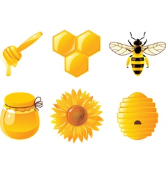 Honey icons vector