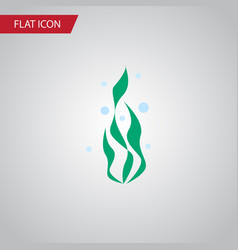 Isolated water plant flat icon seaweed vector